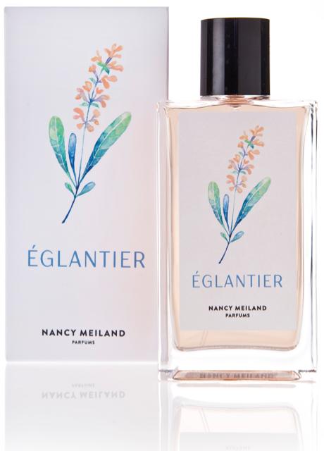 NANCY_MEILAND_EGLANTIER