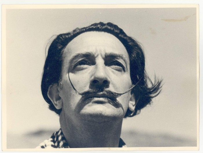 Salvador Dali picture