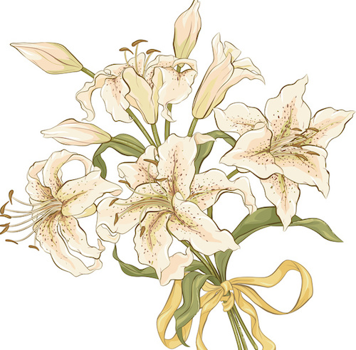 'Fragrance ingredient of the week: Lily'