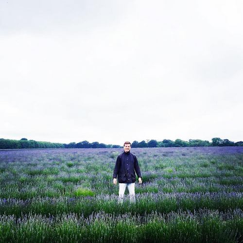 Mitchell And Peach Outstanding In Their Field S Of Lavender We Loved Them So Much Invited You Too