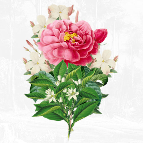 Forgot the card? Panic over, as Penhaligon's invite you to create a virtual Valentine's bouquet!