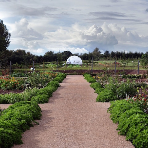 Come into the garden with Parterre