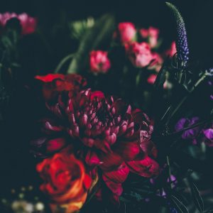 Fragrance Family Friday: FLORAL