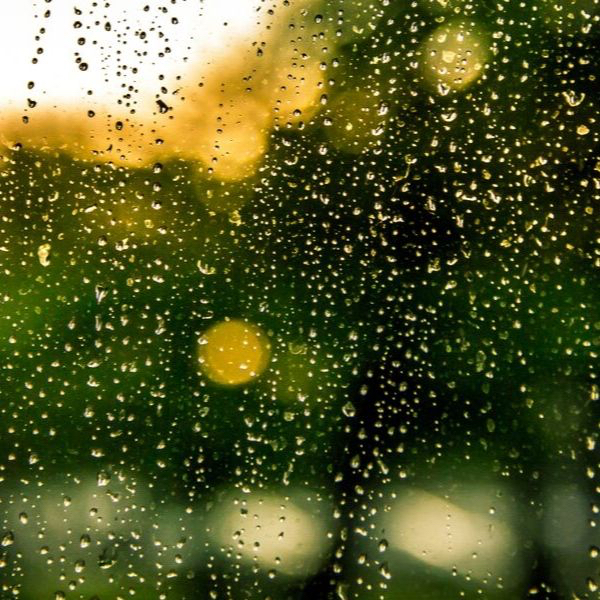 Rain, rain… come to stay? Why we love that smell