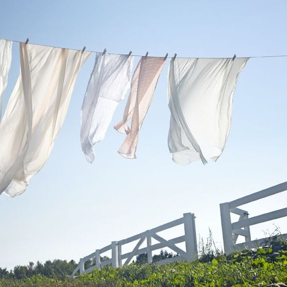 What makes line-dried laundry smell so good?