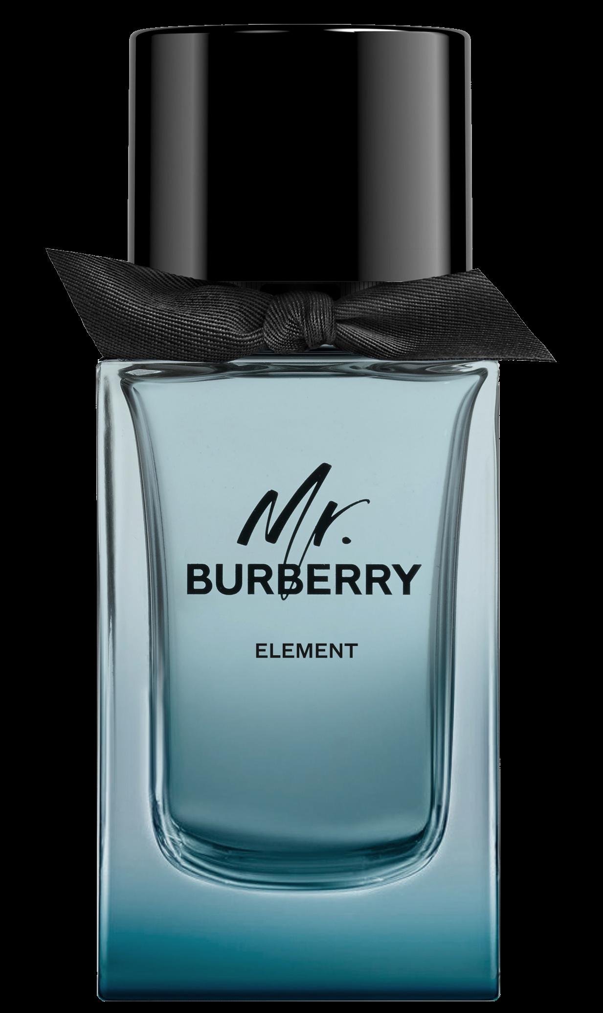 BURBERRY_MR_BURBERRY_ELEMENT.