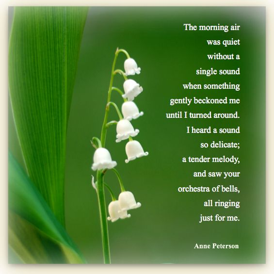 lily of the valley poem