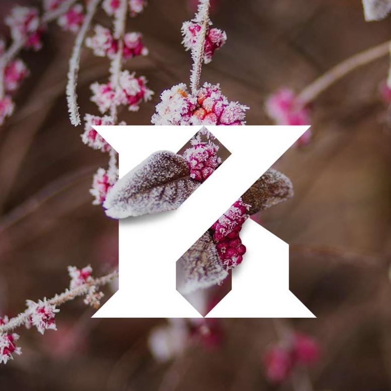 'Kingdom Scotland launch seasonal scent events online'