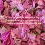 City of roses – the perfume capital of India