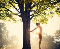 Feel-good fragrances & 'wellness' scents