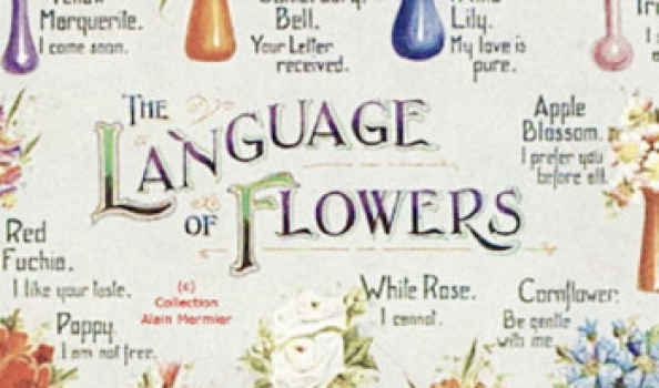 Say it with flowers – 5 coded messages to send with scent